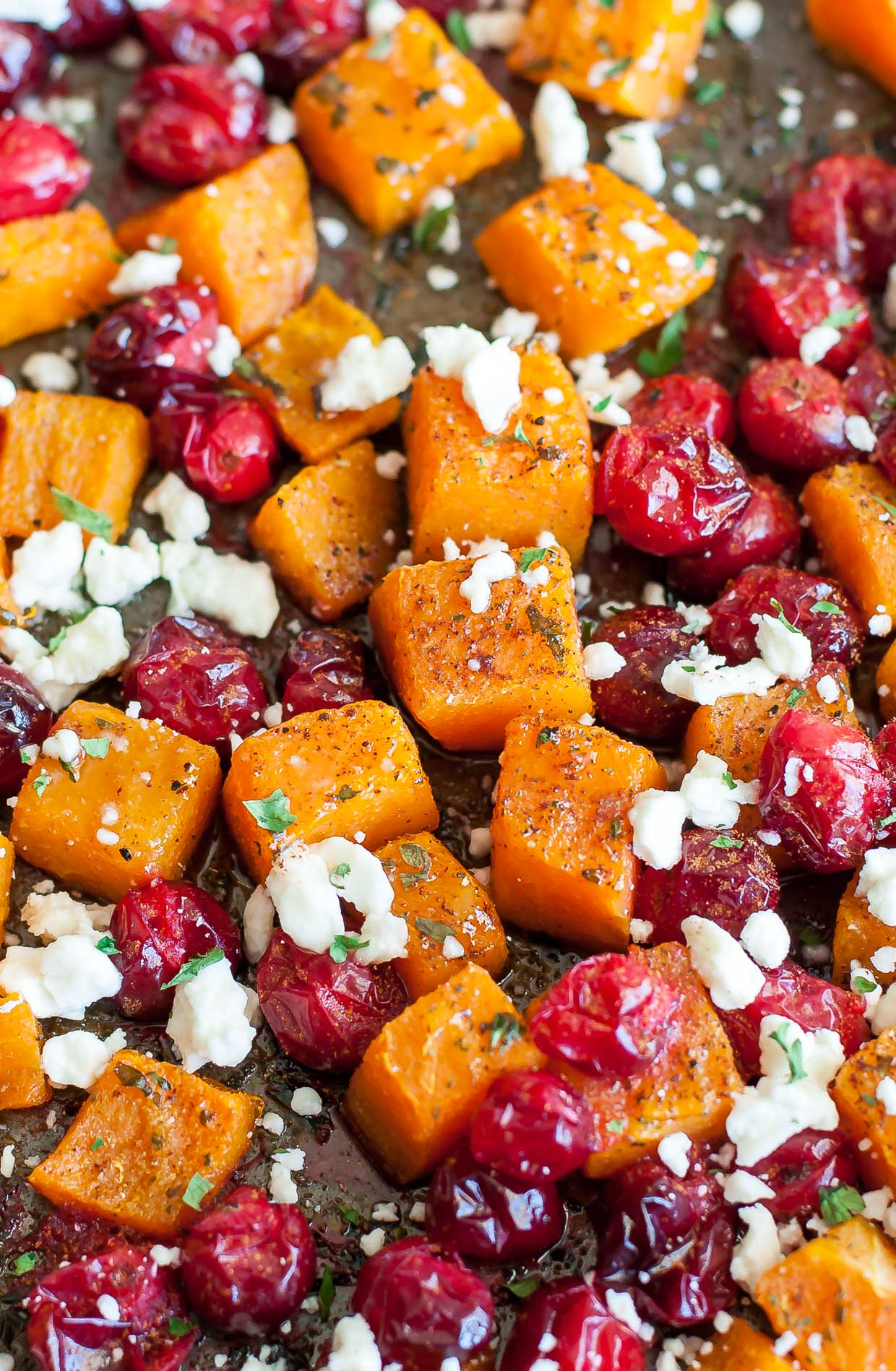 Honey Roasted Butternut Squash with Cranberries Honey Roasted Butternut Squash with Cranberries new foto